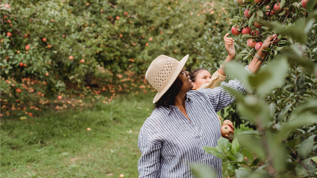 woman and teenager smiling and picking fruit in orchard